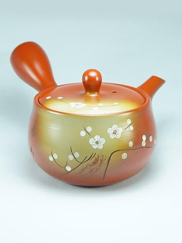 Shiraume plum flowers teapot