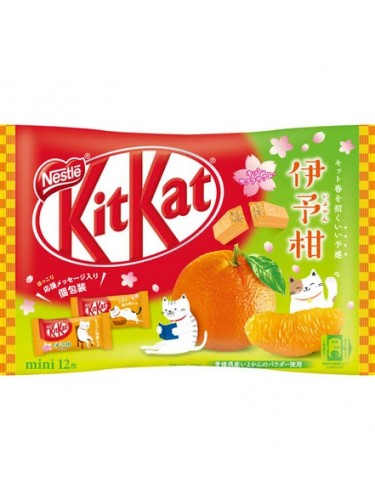 Kit Kat Mikan