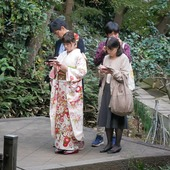 🇬🇧 Traditional Japan is so wonderful 😍 👘 📱📱📱📱 🇫🇷 Le Japon des traditions est si merveilleux 😻 🍁 📱📱📱📱 . . #Japan #Japon #Kimono #📱 #japanesegarden #contrast #jardinjaponais
